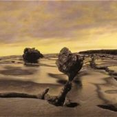 Gallery 8 Salt Spring Island-Artist Gary Brettnacher