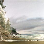 Gallery 8 Salt Spring Island - Artist Carol Evans
