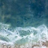 Gallery 8 Salt Spring Island - Artist Brenda Walker