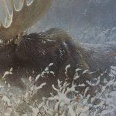 Gallery 8 Salt Spring Island - Artist Robert Bateman