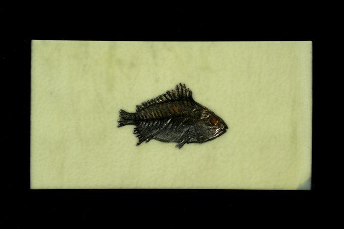 Gallery 8 Salt Spring Island - Artist Bob Leatherbarrow