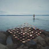 Gallery 8 Salt Spring Island - Artist David Ellingsen